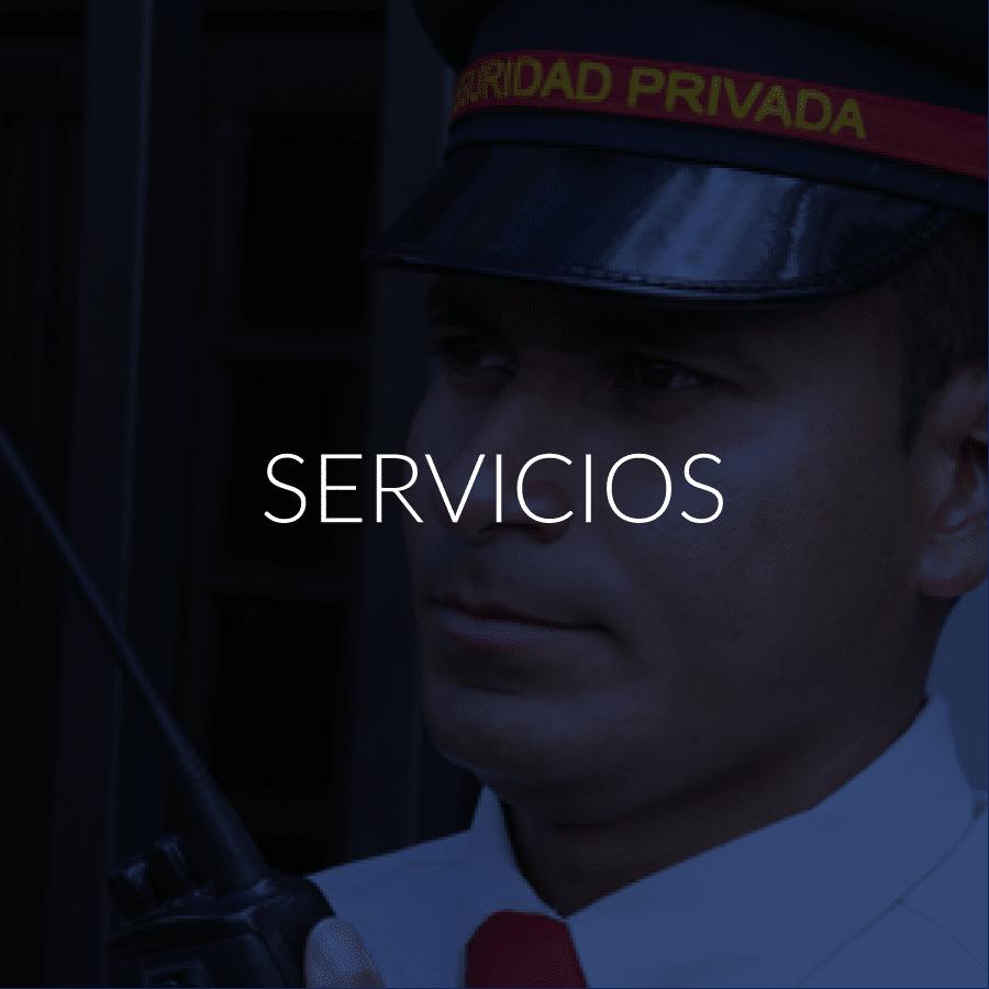 FundeCEES - Servicios